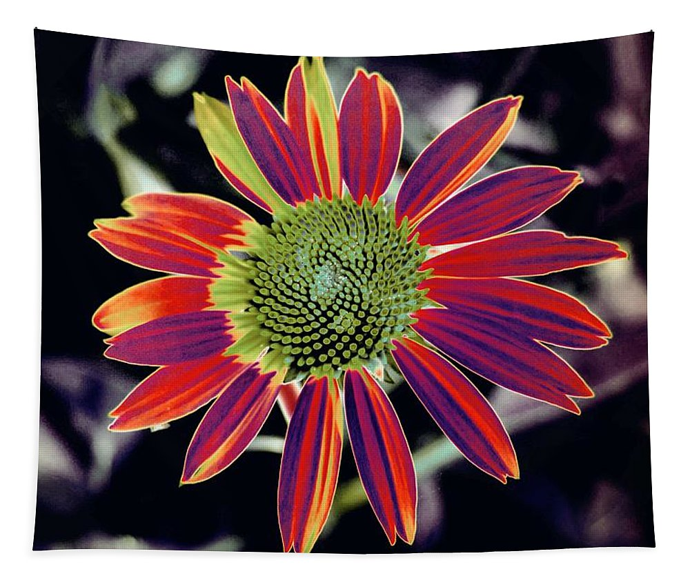Floral Tapestry featuring the photograph Magic Box 04 - Photopower 3206 by Pamela Critchlow