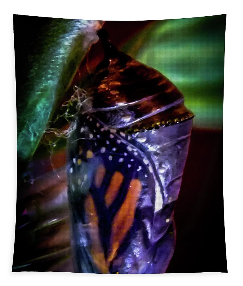 Monarch Butterflies Tapestry featuring the photograph Magical Monarch by Karen Wiles
