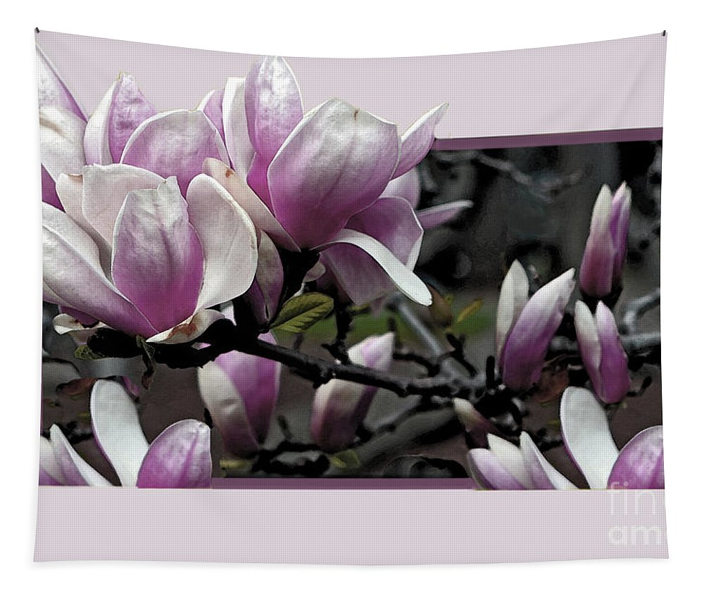 Magnolia Tapestry featuring the photograph Magnolia Fantasy 2 by Madeline Ellis
