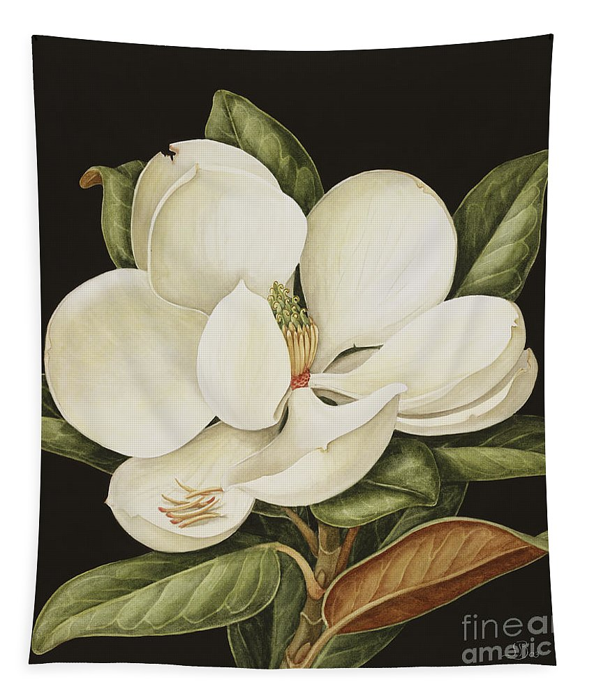 Still-life Tapestry featuring the painting Magnolia Grandiflora by Jenny Barron
