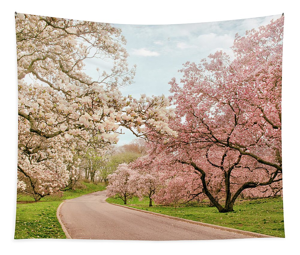 Magnolia Tree Tapestry featuring the photograph Magnolia Grove by Jessica Jenney