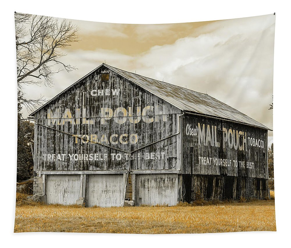 Mail Pouch Tobacco Tapestry featuring the photograph Mail Pouch Barn - Us 30 #3 by Stephen Stookey