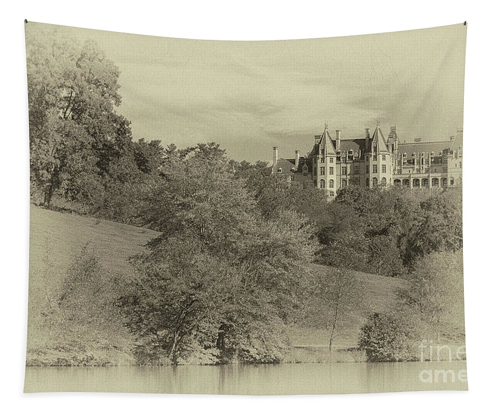 Biltmore Tapestry featuring the photograph Majestic Biltmore Estate by Dale Powell