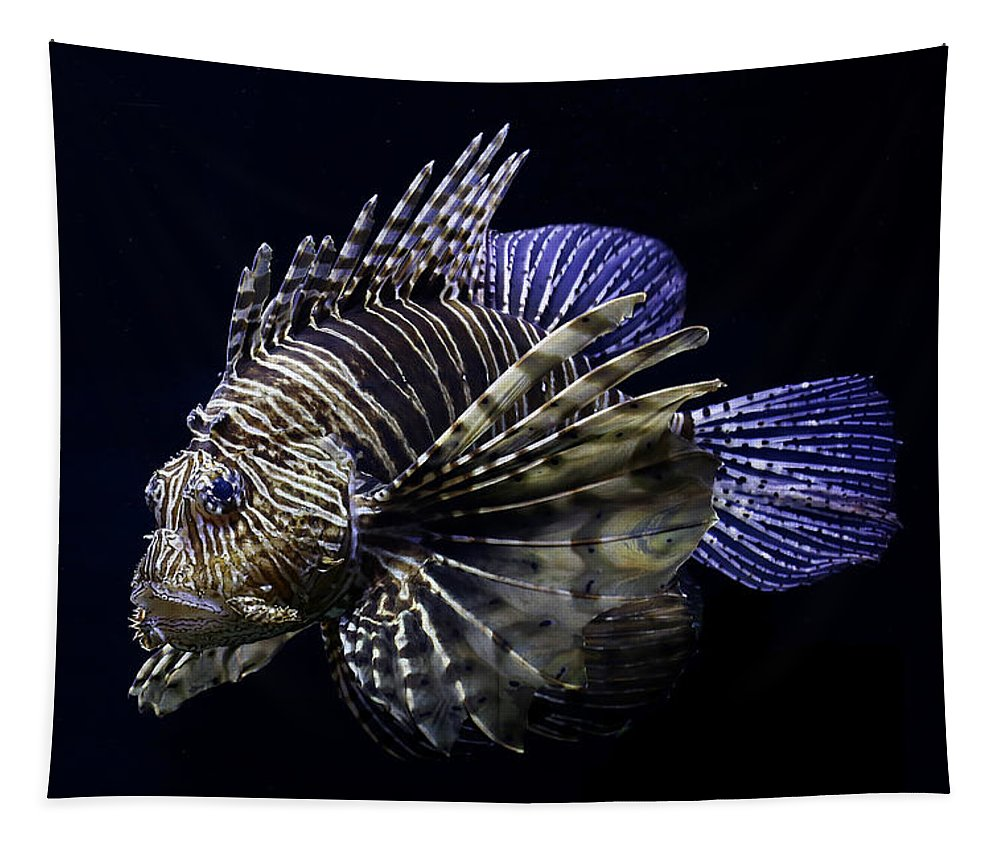 Lionfish Tapestry featuring the photograph Majestic Lionfish by Debi Dalio