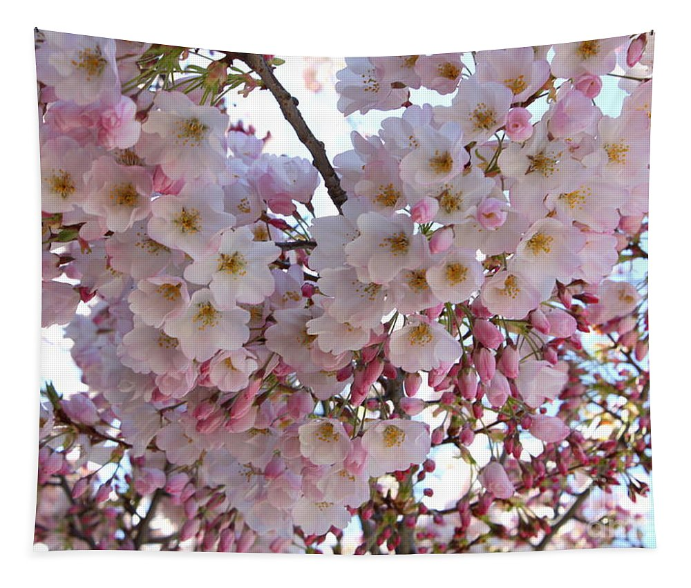 Pink Blossoms Tapestry featuring the photograph Many Pink Blossoms by Carol Groenen