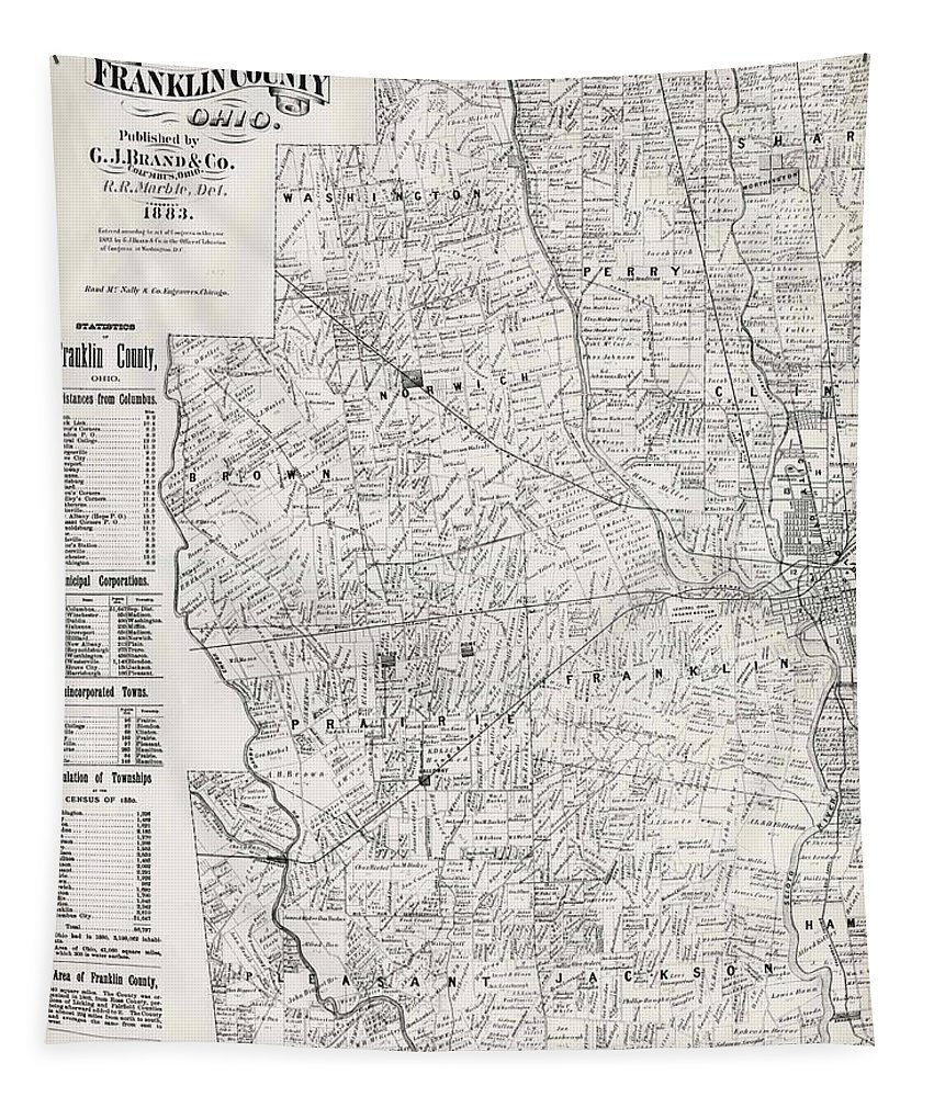 Map Tapestry featuring the drawing Map Of Franklin County Ohio 1883 by Mountain Dreams