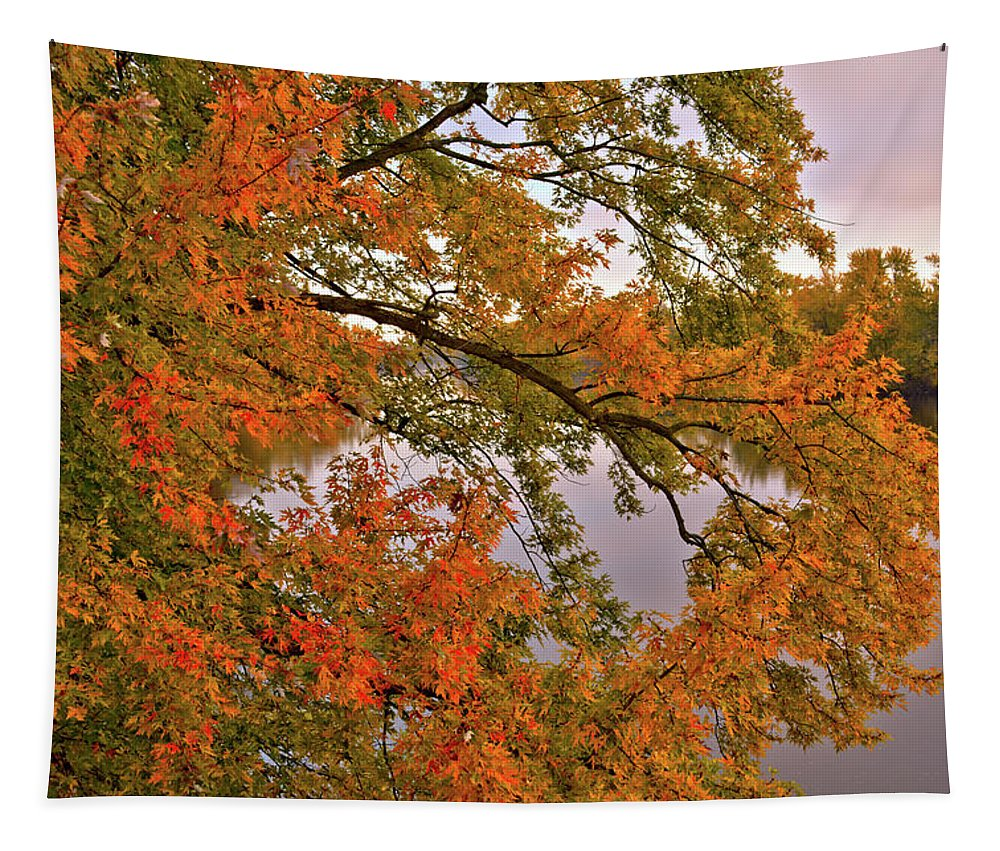 Maple Tapestry featuring the photograph Maple Over The River by Bonfire Photography