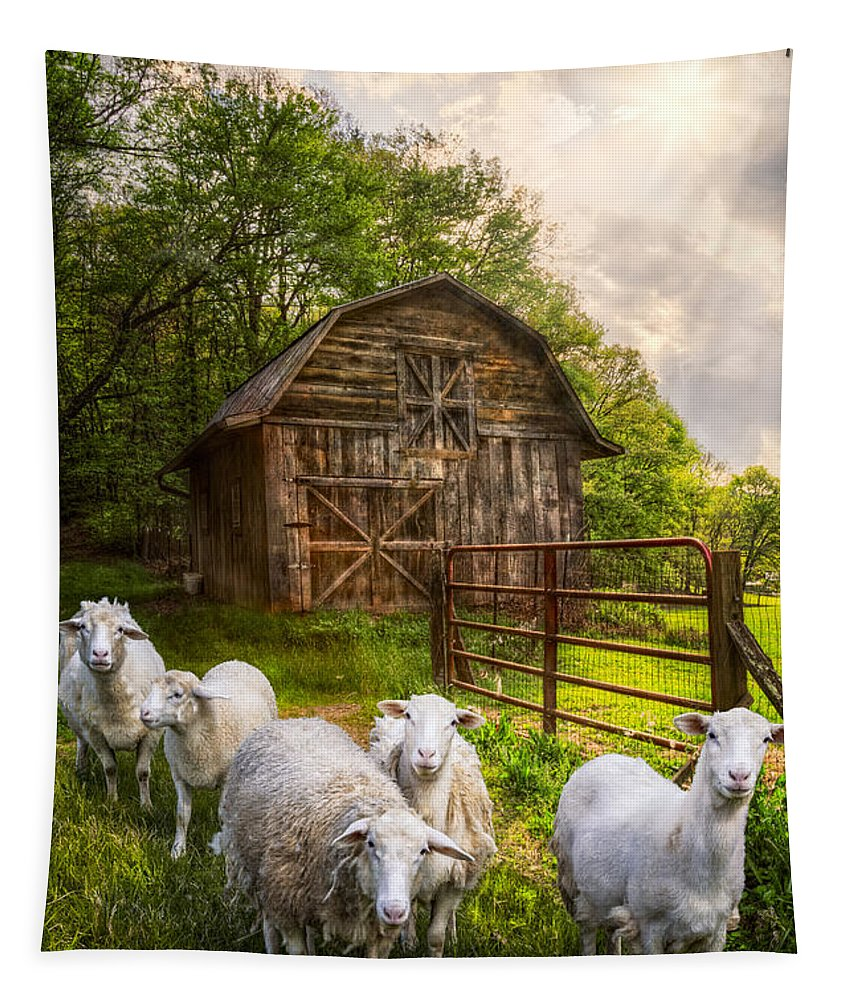 Appalachia Tapestry featuring the photograph Mary Had A Little Lamb by Debra and Dave Vanderlaan