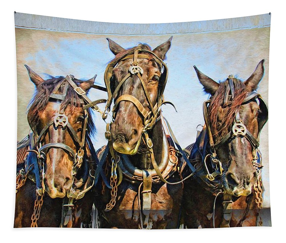 Alicegipsonphotographs Tapestry featuring the photograph Mary's Team by Alice Gipson