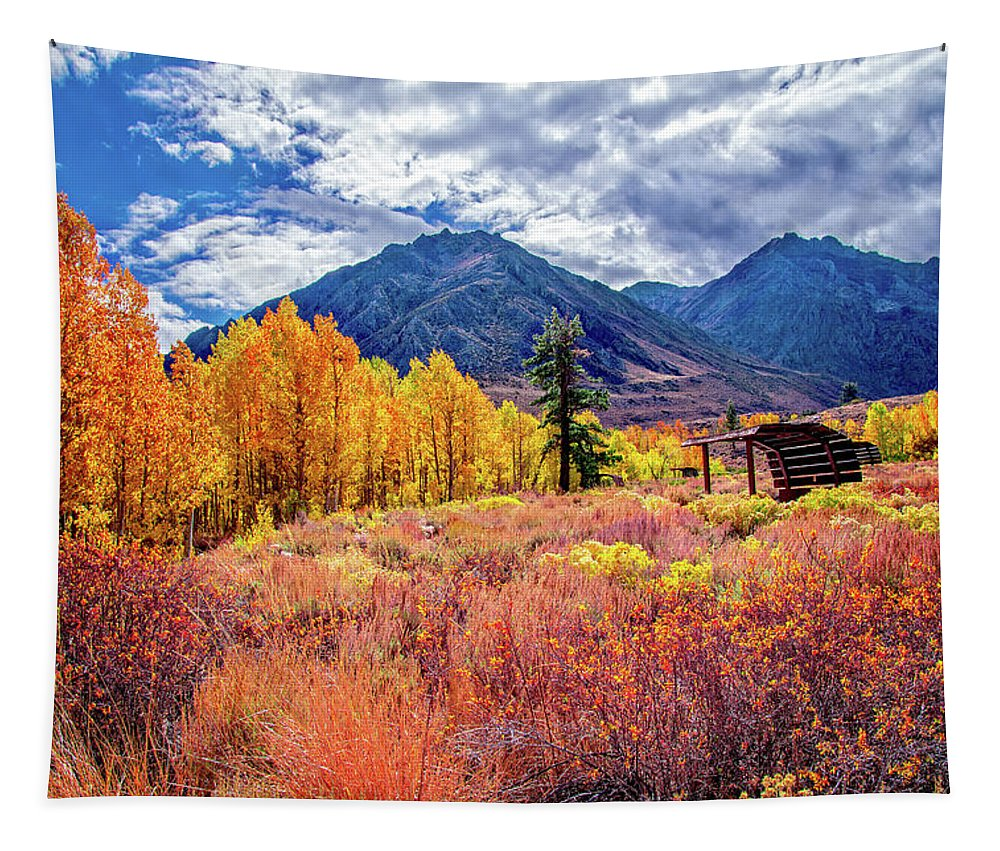 Mcgee Creek Tapestry featuring the photograph Mcgee Creek Majesty by Lynn Bauer