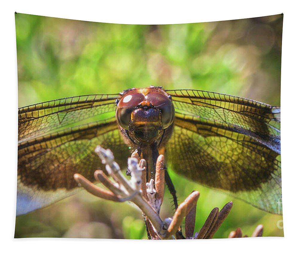 Meadow Hawk Dragonfly Tapestry featuring the photograph Meadow Hawk Dragonfly 2 by Mitch Shindelbower