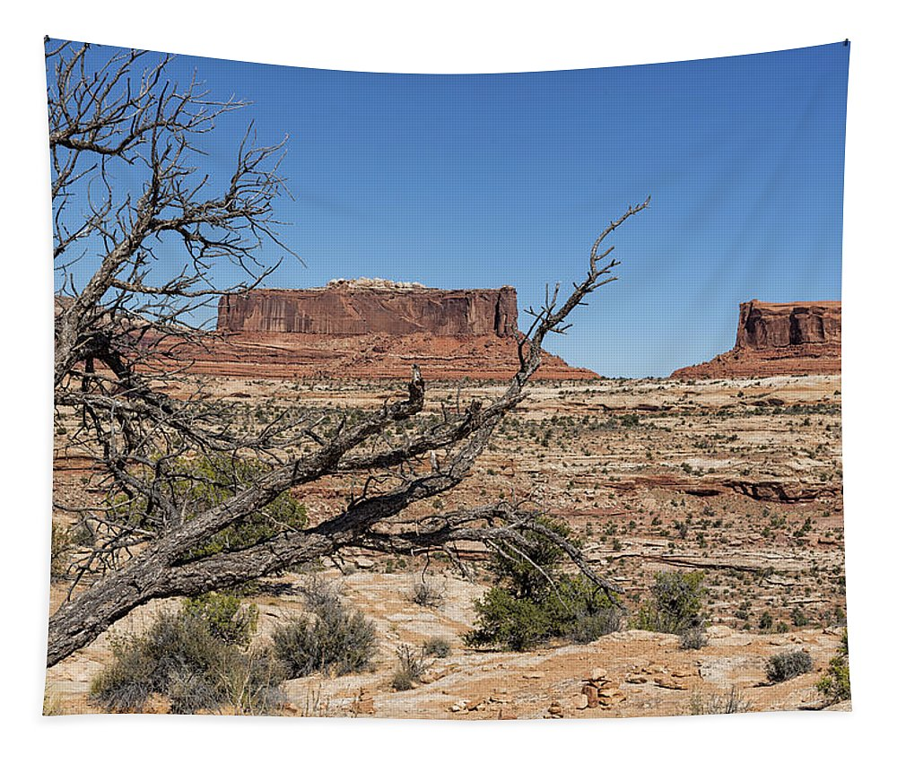 Mesa Tapestry featuring the photograph Mesas Near Moab by Belinda Greb