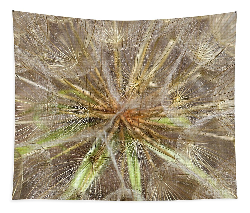 Macro Tapestry featuring the photograph Mesmerizing Salsify Macro by Carol Groenen