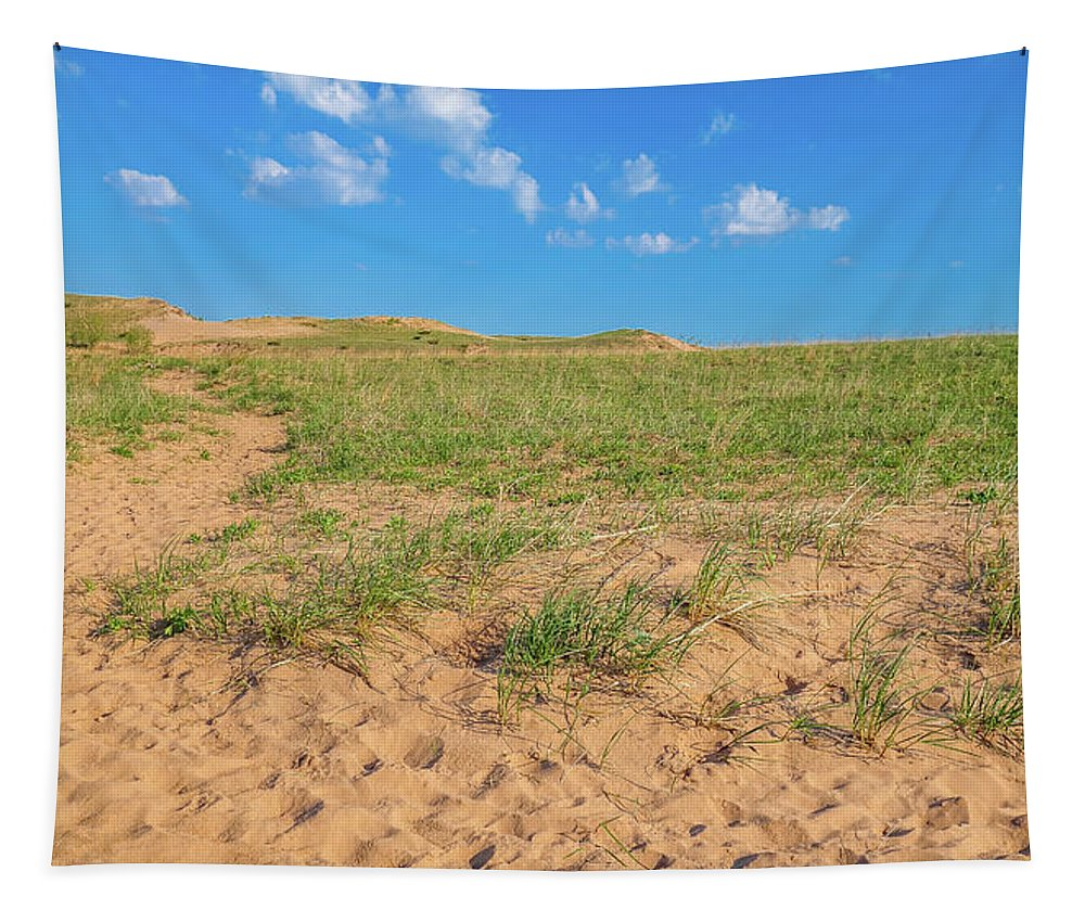 Michigan Sand Dune Landscape Tapestry featuring the photograph Michigan Sand Dune Landscape In Summer by Dan Sproul