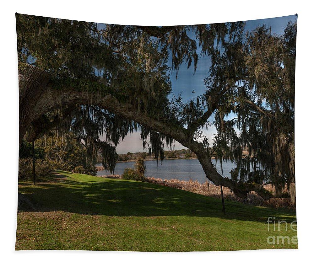 Live Oak Tree Tapestry featuring the photograph Middleton Live Oak Charm by Dale Powell