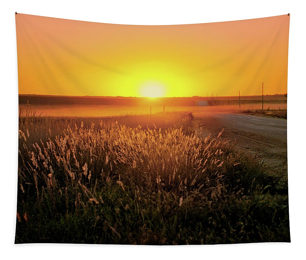 Sunset Tapestry featuring the photograph Midwest Sunset by Nikolyn McDonald