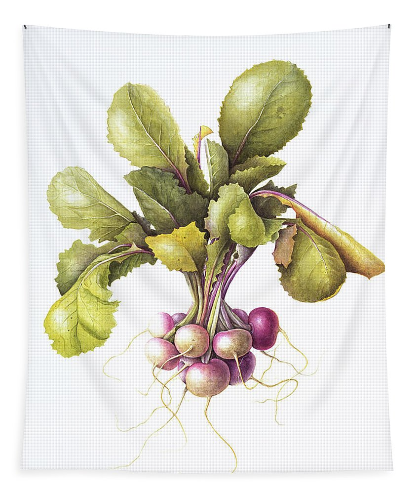 Turnip Tapestry featuring the painting Miniature Turnips by Margaret Ann Eden