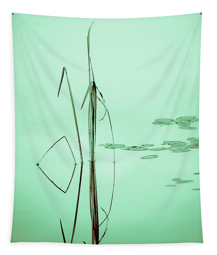 Grass Tapestry featuring the photograph Minimal Grass by Sherman Perry