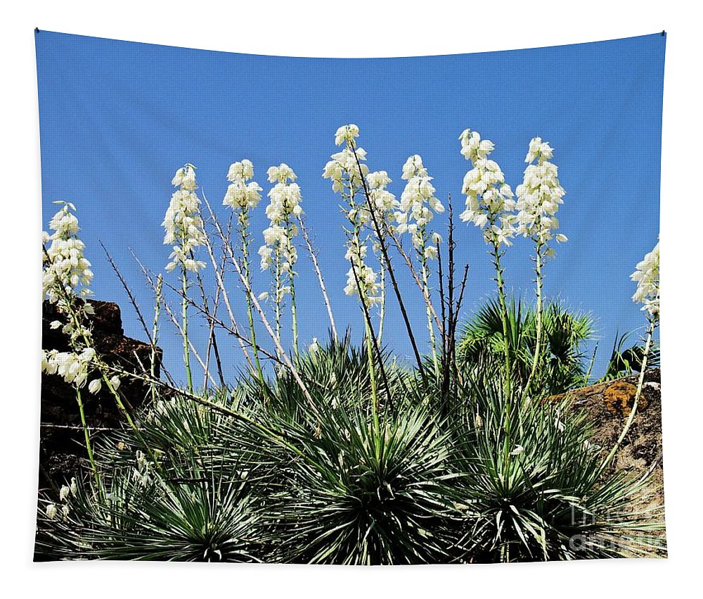 Yucca Tapestry featuring the photograph Mission Yuccas by Gary Richards
