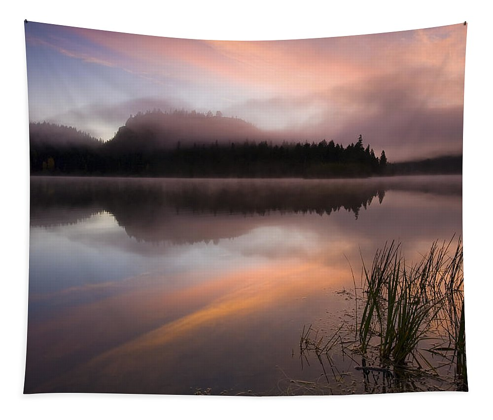 Sunrise Tapestry featuring the photograph Misty Dawn by Mike Dawson