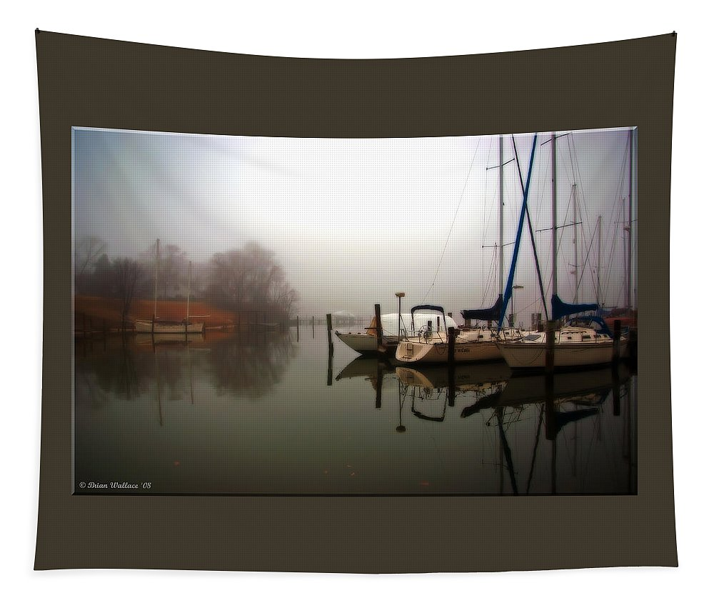 2d Tapestry featuring the photograph Misty Reflections by Brian Wallace