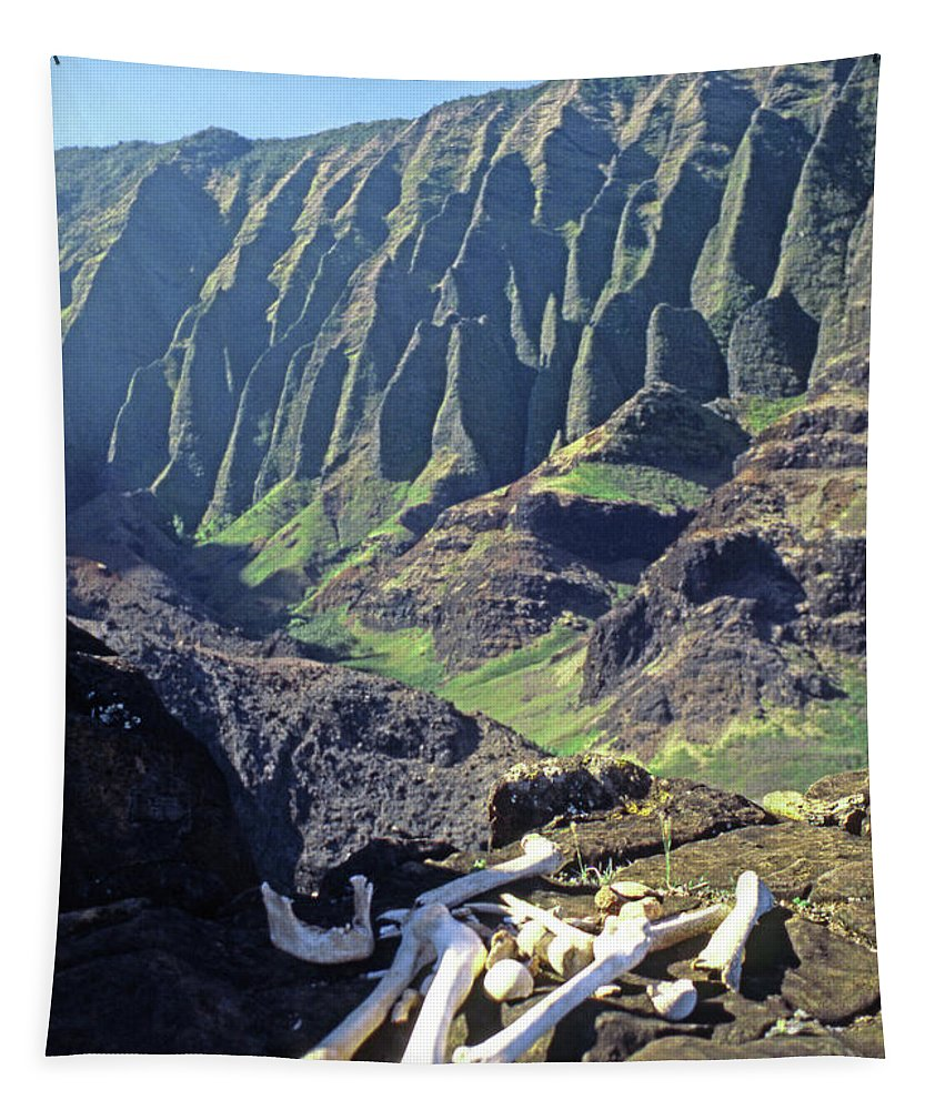 Sacred Tapestry featuring the photograph Mmm-119 Sacred Hawaiian Chieftans Resting Place Honopu Arch by Ed Cooper Photography