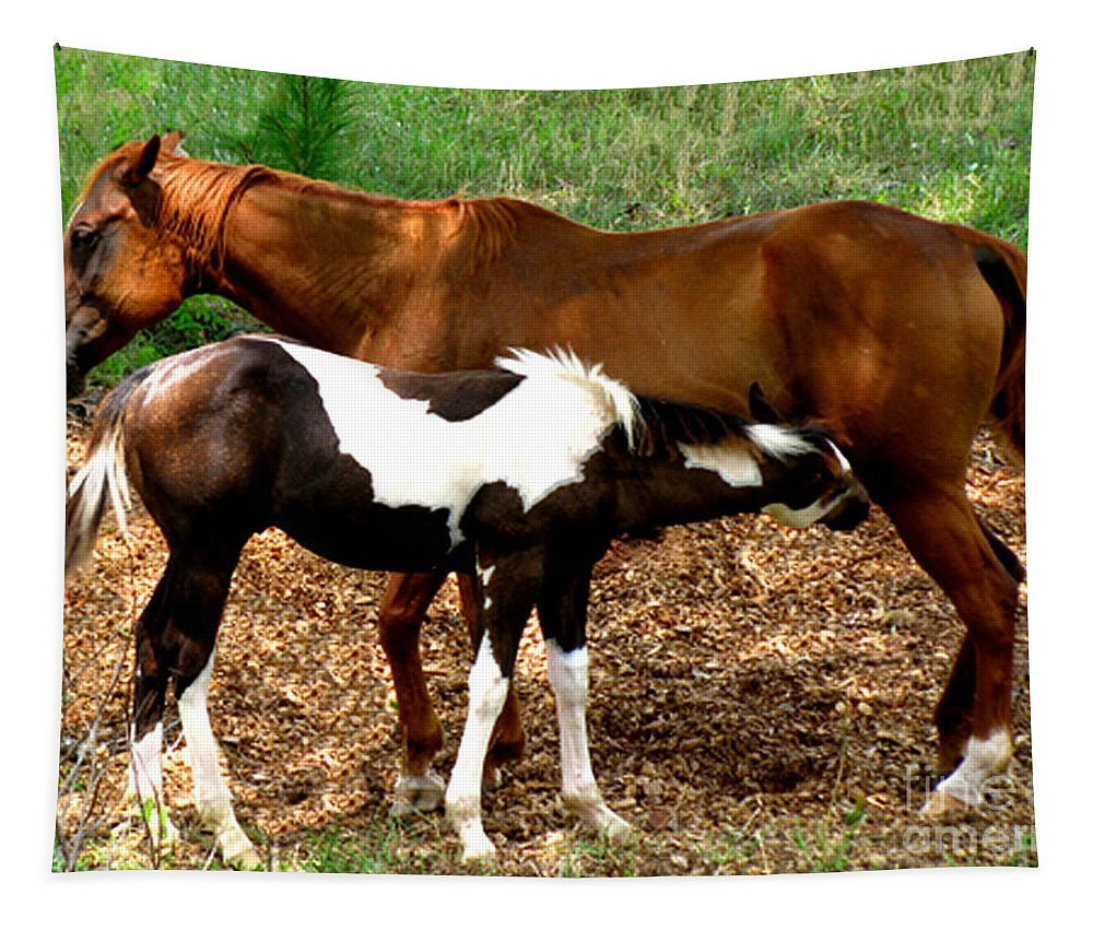 Horses Tapestry featuring the photograph Mom And Baby by Donna Brown