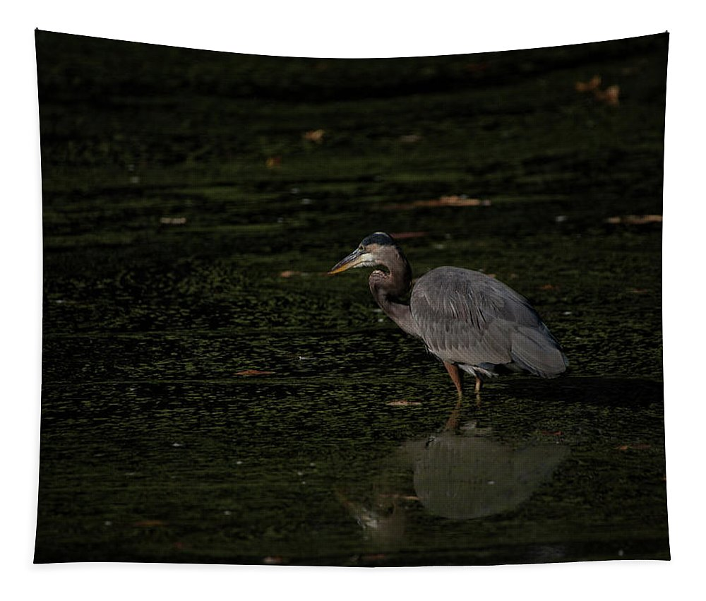 Moment Of The Heron Tapestry featuring the photograph Moment Of The Heron by Karol Livote