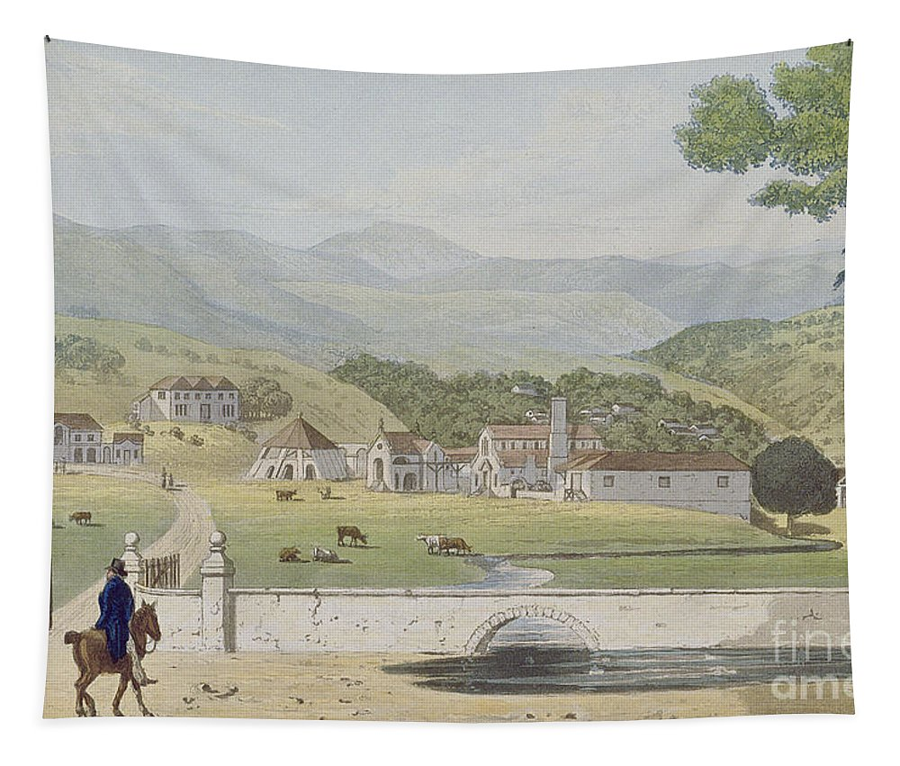 Montpelier Tapestry featuring the painting Montpelier Estates - St James by James Hakewill