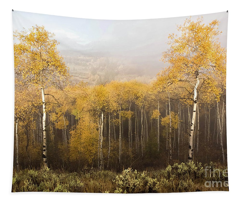 Aspen Tapestry featuring the photograph Morning Burn by Lynn Sprowl