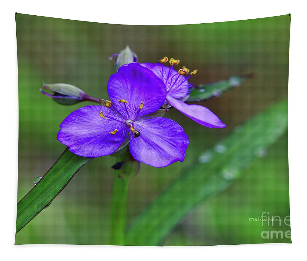 Flower Tapestry featuring the photograph Morning Dew by Deborah Benoit