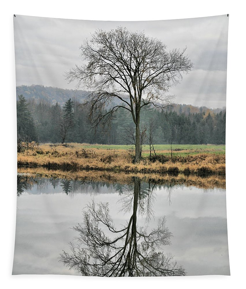 Reflections Tapestry featuring the photograph Morning Haze And Reflections by Deborah Benoit