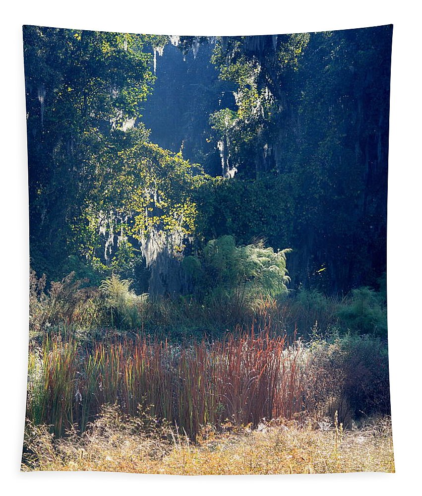 Sunshine Tapestry featuring the photograph Morning Marsh Sunshine by Carol Groenen