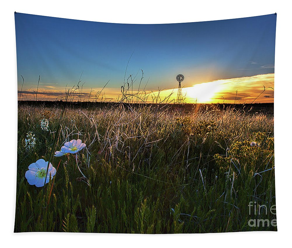 Grasslands Landscape Tapestry featuring the photograph Morning On The Grasslands by Jim Garrison