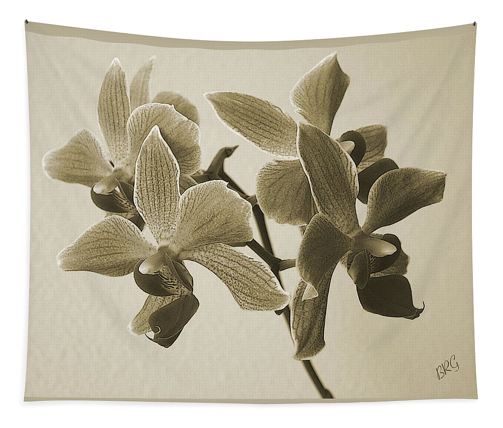 Orchid Tapestry featuring the photograph Morning Orchid by Ben and Raisa Gertsberg