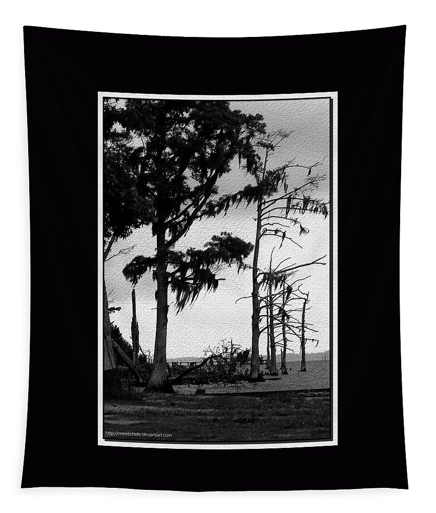 Trees Tapestry featuring the photograph Mossy Beach Trees by Lisa Stanley