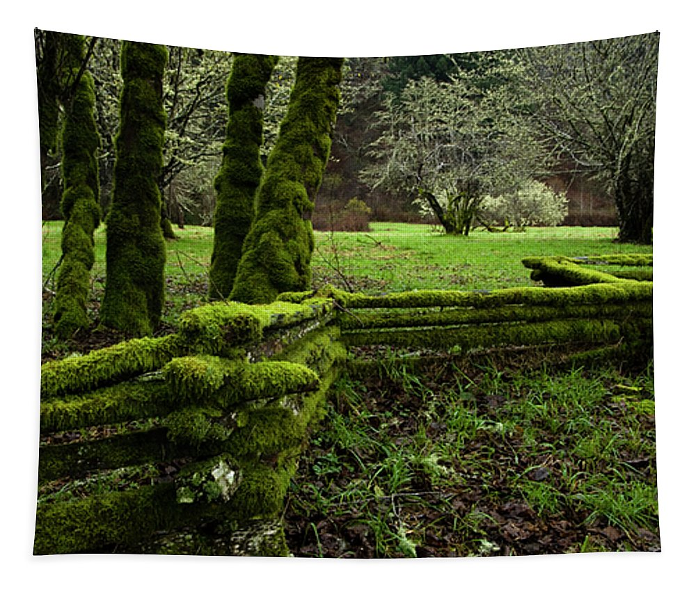 Moss Tapestry featuring the photograph Mossy Fence 2 by Bob Christopher