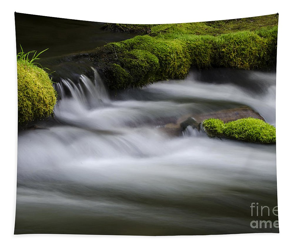 Falls Tapestry featuring the photograph Mossy Rocks Oregon 1 by Bob Christopher