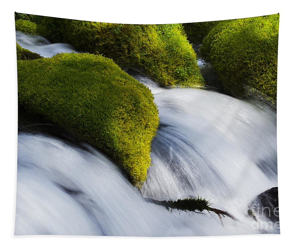 Falls Tapestry featuring the photograph Mossy Rocks Oregon 2 by Bob Christopher