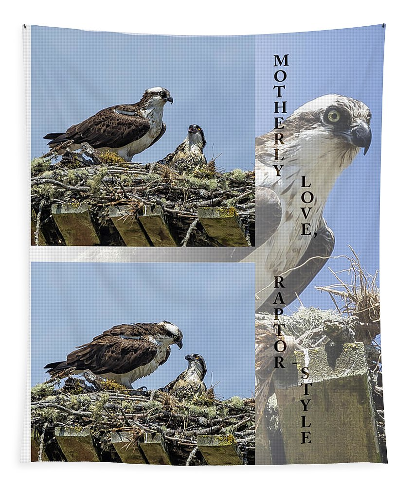Osprey Tapestry featuring the photograph Motherly Love Raptor Style by Belinda Greb