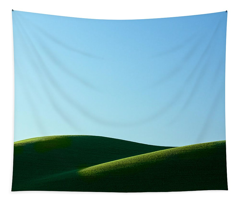 Simplicity Tapestry featuring the photograph Mounds by Todd Klassy