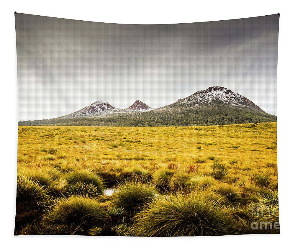 Wilderness Tapestry featuring the photograph Mount Arrowsmith Tasmania Australia by Jorgo Photography - Wall Art Gallery