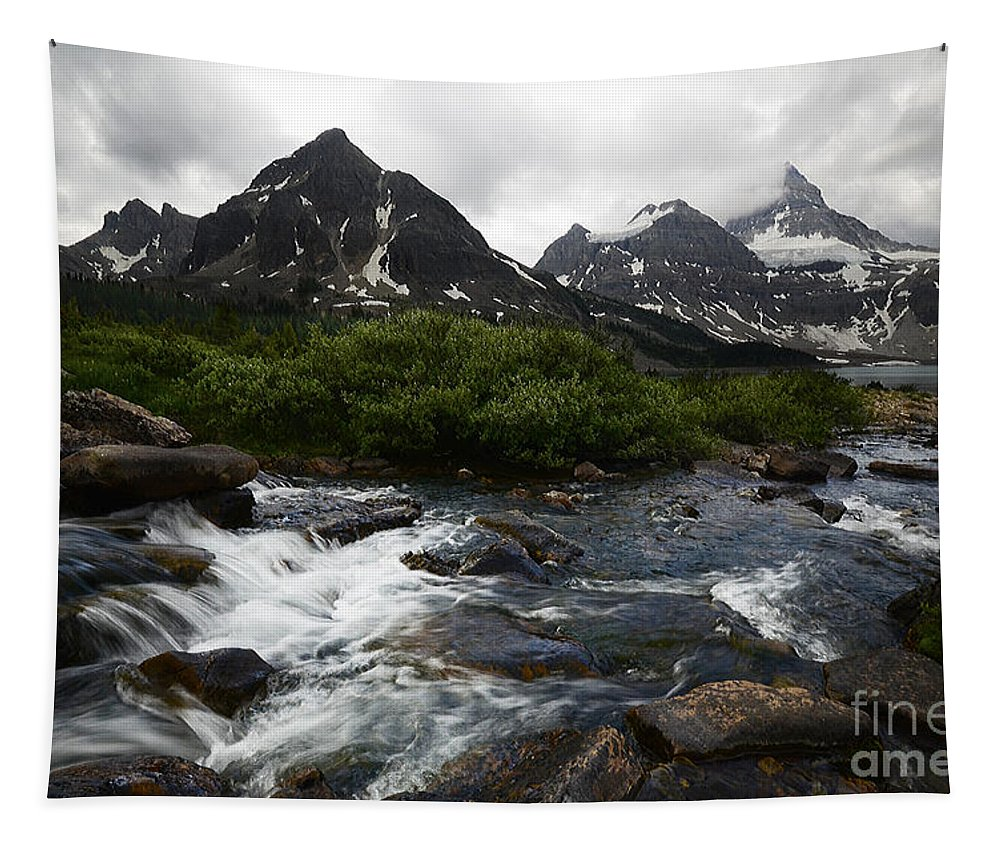 Mount Assiniboine Tapestry featuring the photograph Mount Assiniboine Canada 15 by Bob Christopher