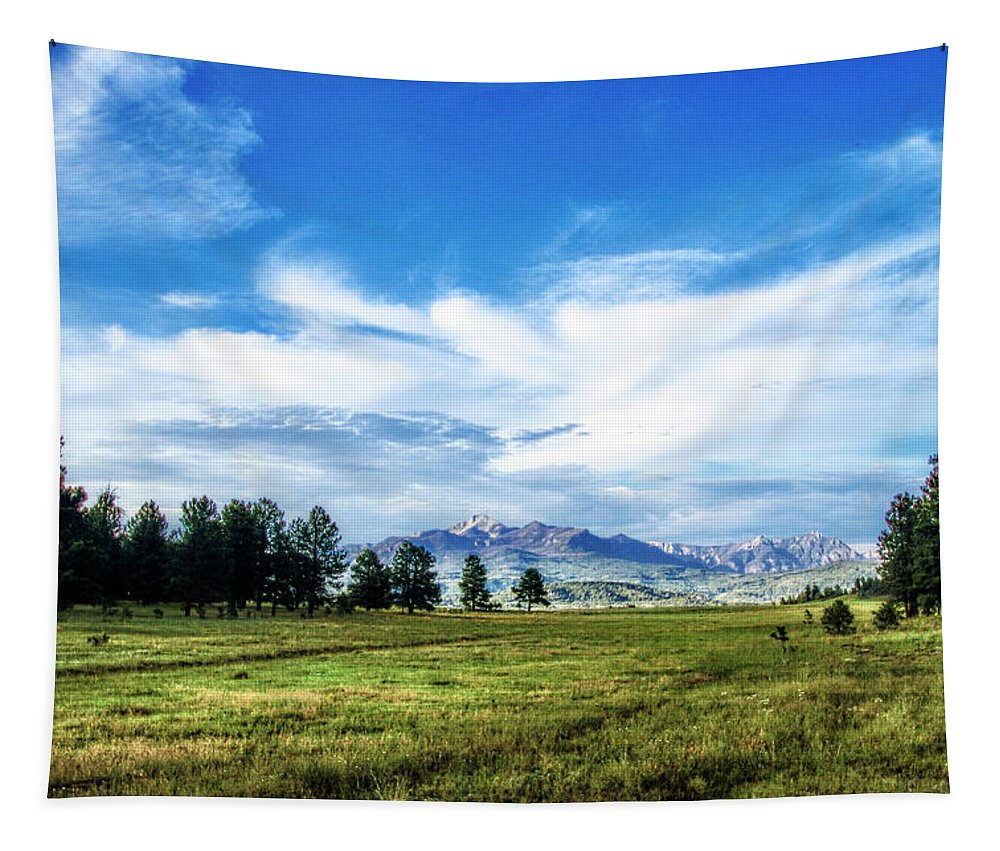 Colorado Tapestry featuring the photograph Mount Pagosa Meadow by Mike Braun