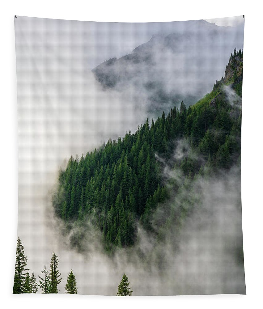 Rainier Tapestry featuring the photograph Mount Rainier National Park Clouds And Forest by Mike Reid