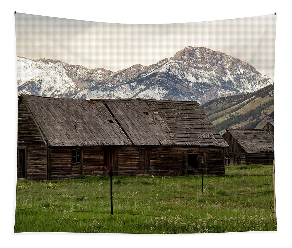 Barn Tapestry featuring the photograph Mountain Barn by Debby Richards