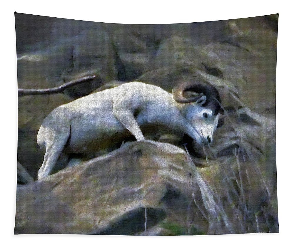 2d Tapestry featuring the photograph Mountain Goat by Brian Wallace