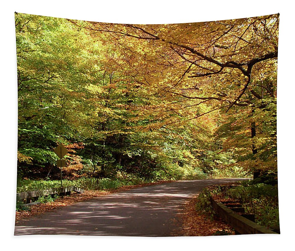 Mountain Road Tapestry featuring the photograph Mountain Road Stowe Vt by Felipe Adan Lerma