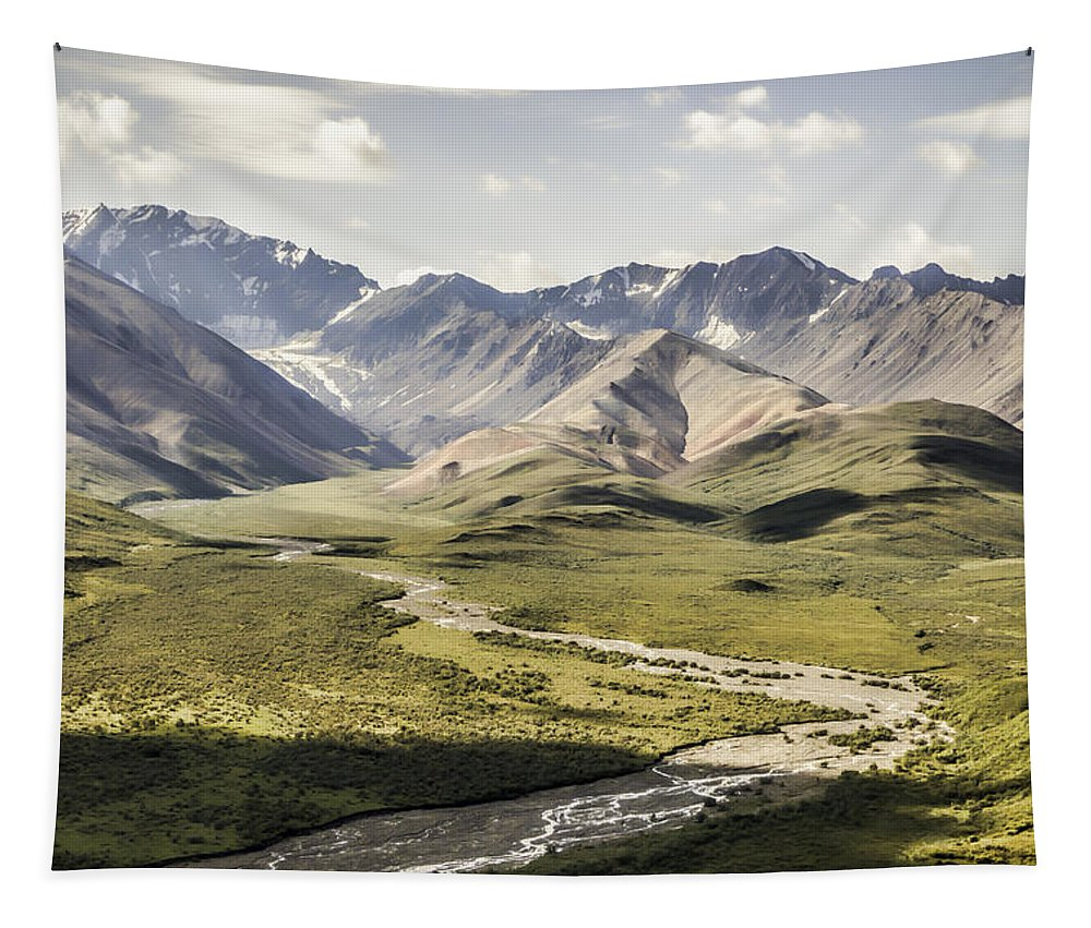Mountains In Denali National Park Tapestry featuring the photograph Mountains In Denali National Park by Phyllis Taylor
