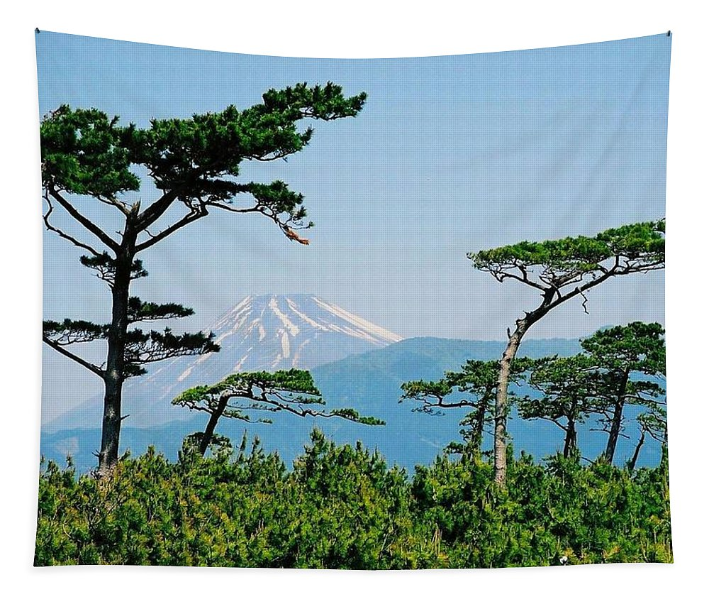 Asia Tapestry featuring the photograph Mt. Fuji ... by Juergen Weiss